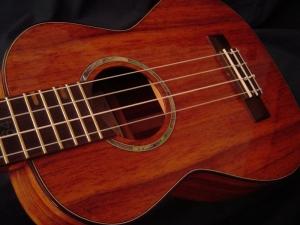 ed's uke 420 (800x600)